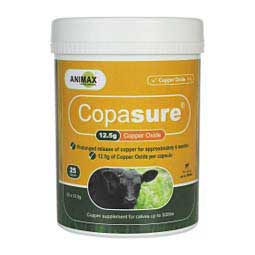 Copasure 12.5 gm Copper Oxide Bolus for Calves Animax